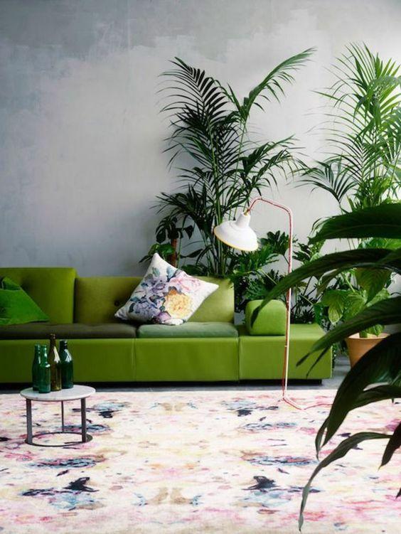 farbkombinationen im wohnzimmer grünes sofa und viele pflanzen - pflanzen für wohnzimmer