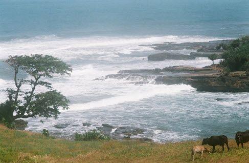 Tempat Wisata Di Garut Gunung Papandayan Pantai Rancabuaya Pemandian Air Panas Cipanas