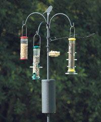 Bird Feeder Supplies Bird Feeder Hardware Products Backyard Birds Feeders Bird Feeder Poles Best Bird Feeders