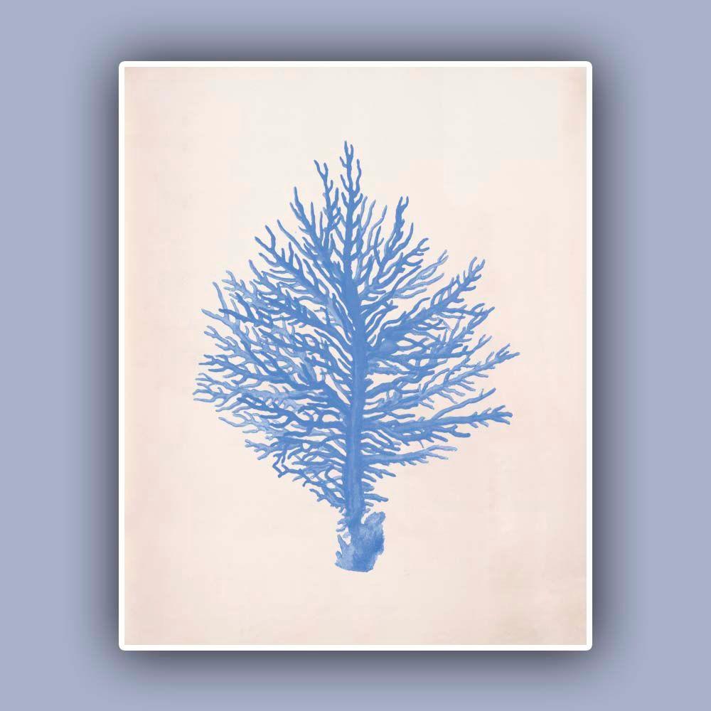 Coral print in blue vintage sea fan image print blue print