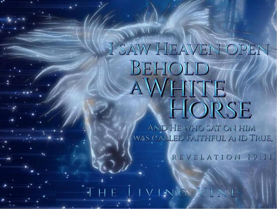 Revelations!! | The revelation of jesus christ, Inspirational horse quotes,  Revelation