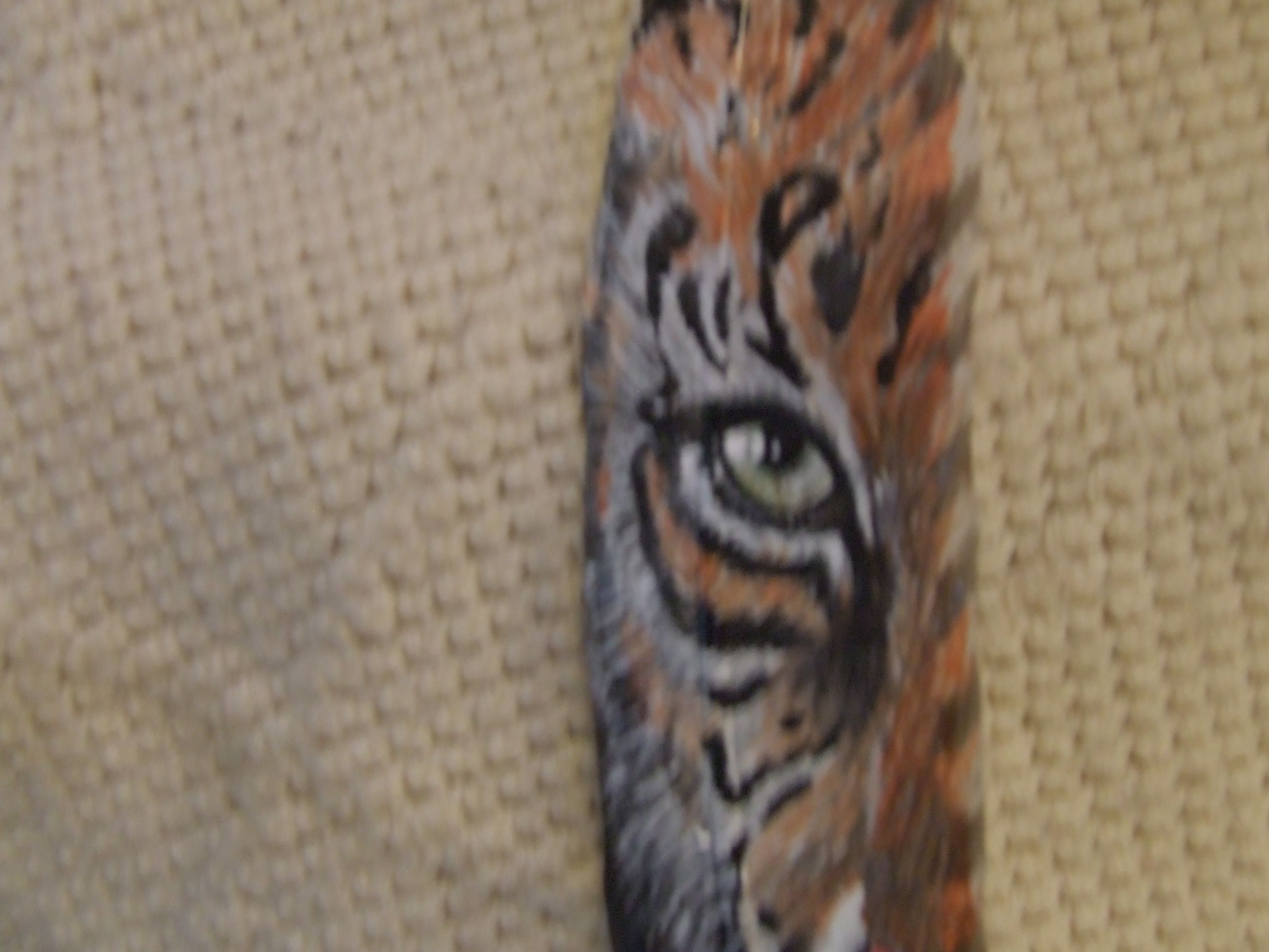 tiger eye painted on a feather