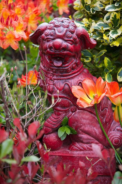 Foo dog amongst the bright spring colours by Four Seasons Garden, via Flickr