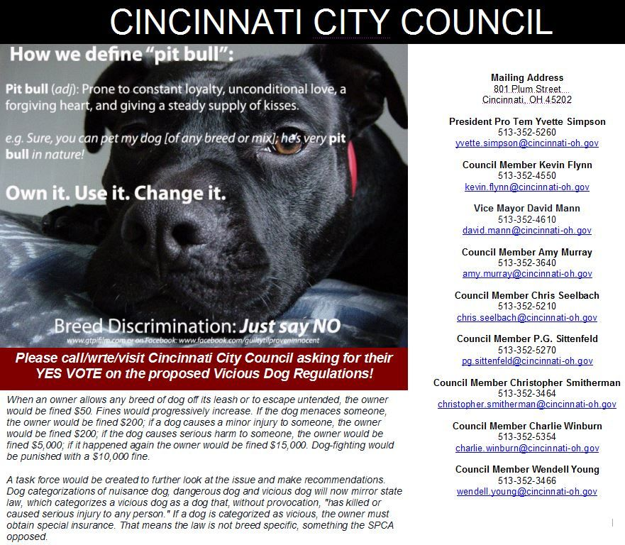 Ovca Urgent Action Alert Cincinnati City Council Meeting On