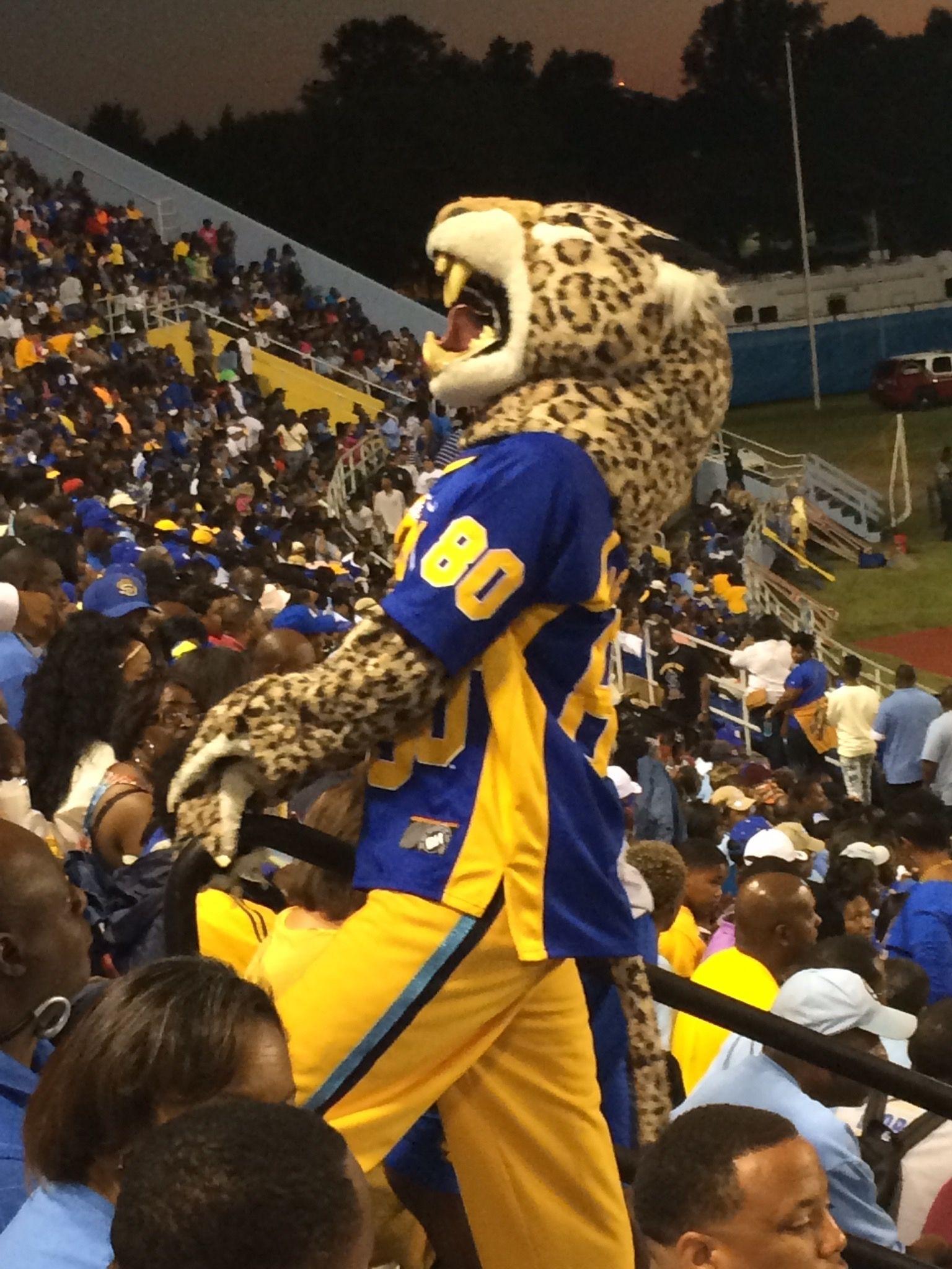 Image result for lacumba II jaguar