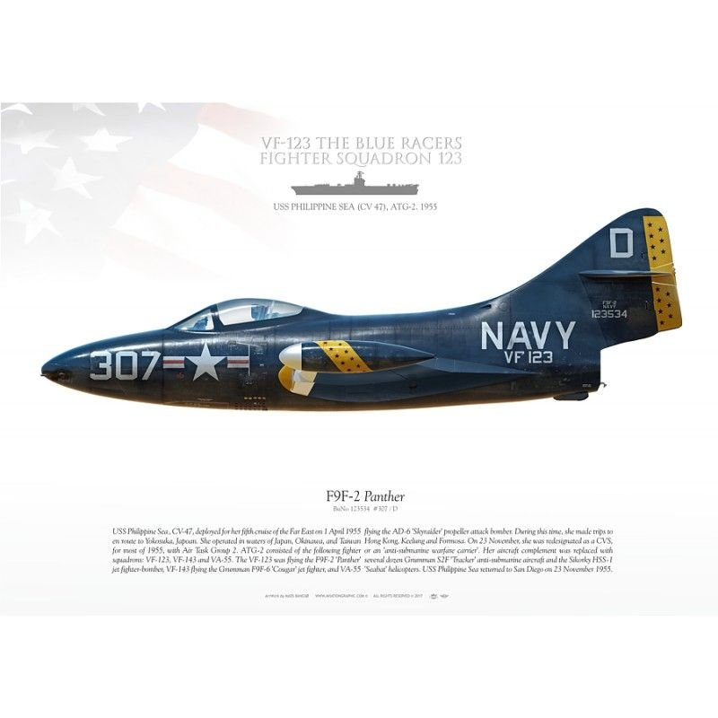 F9f 2 Panther Vf 123 Mb 138 Aviationgraphic Us Military Aircraft Fly Navy Panther