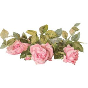 LaurieAnnHGD_Roses2a.png
