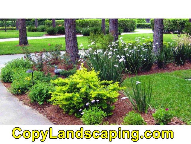 Awesome Landscape Design Zone 6 | Home landscaping ... on zone 6 small gardens, zone 6 flowers, zone 6 vegetable garden,