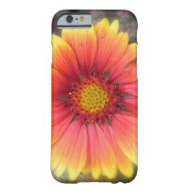 Blanket Flower iPhone 6 Case