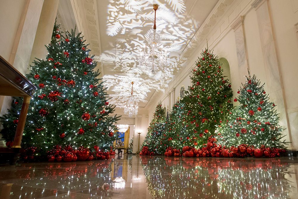 White House Christmas Decorations 2018 Pics White House Christmas Decorations White House Christmas Christmas Decorations