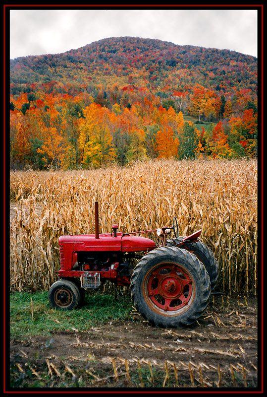 Soms mocht ik met de buurman op de tractor mee.