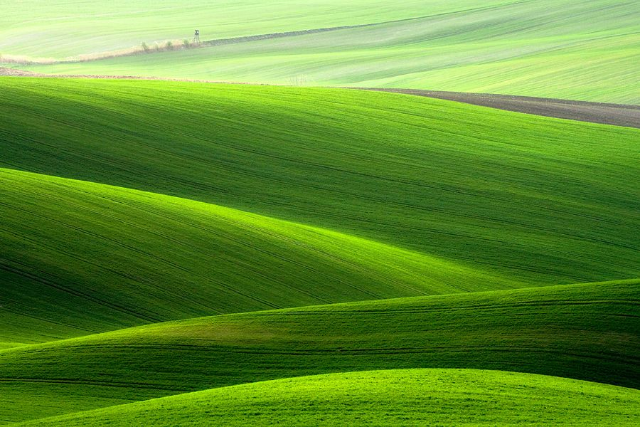 On fields by Marcin Sobas, via 500px