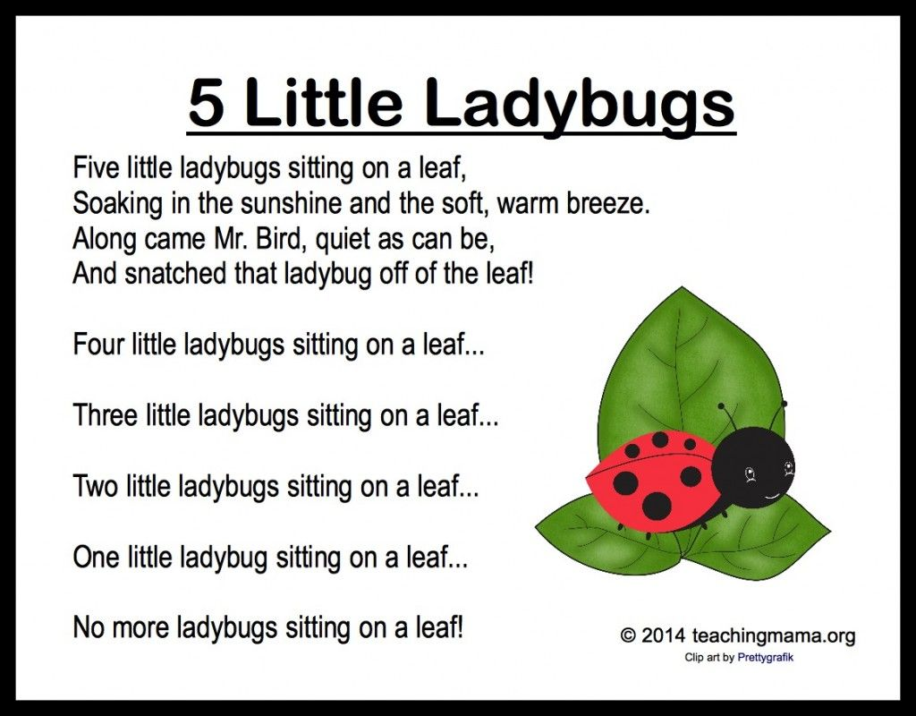 5 Little Ladybugs {Song & Fingerplay} | Daycare ...