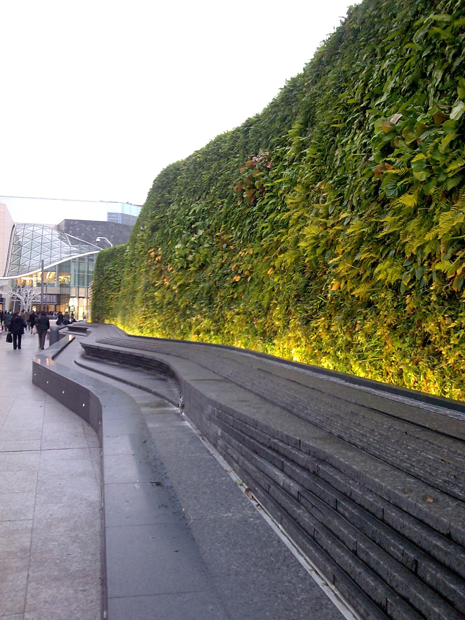 Green Wall Westfield Shopping Centre London Landscape Design