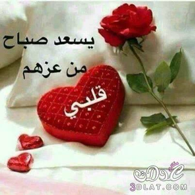 صورة من Http Upload 3dlat Com Uploads 3dlat Com 14128168411 Jpg Good Morning Images Flowers Greetings Good Morning Images