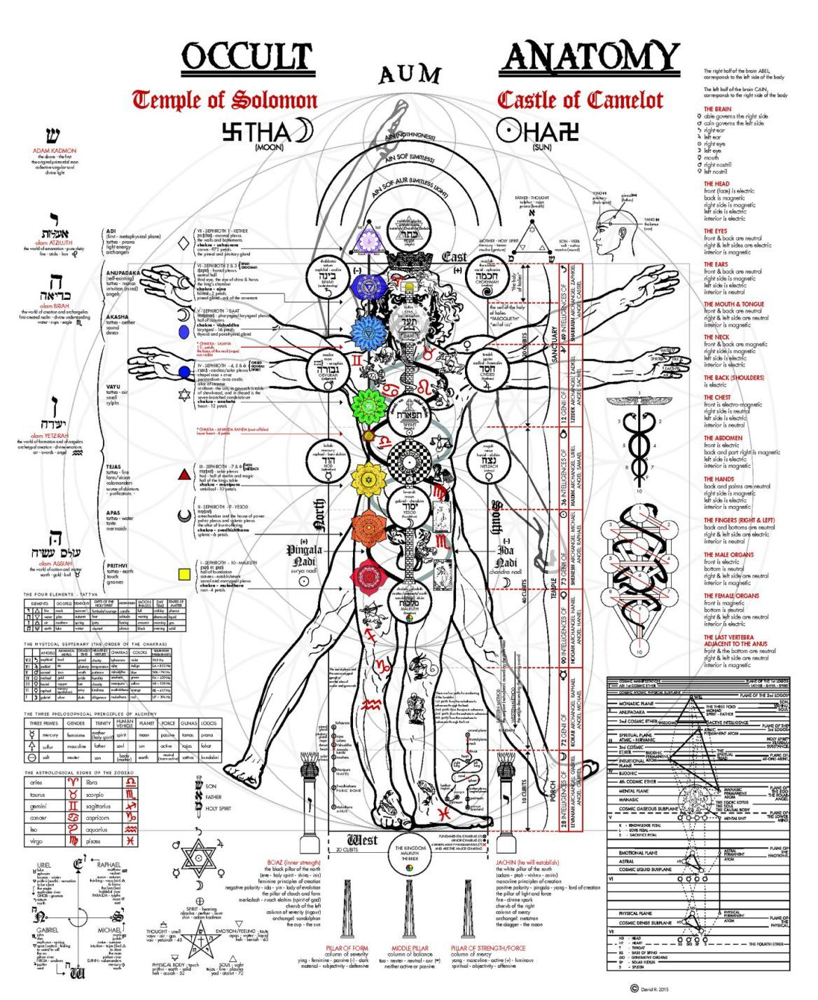 Esoterica The Vitruvian Man Updated Occult Anatomy And Human Body