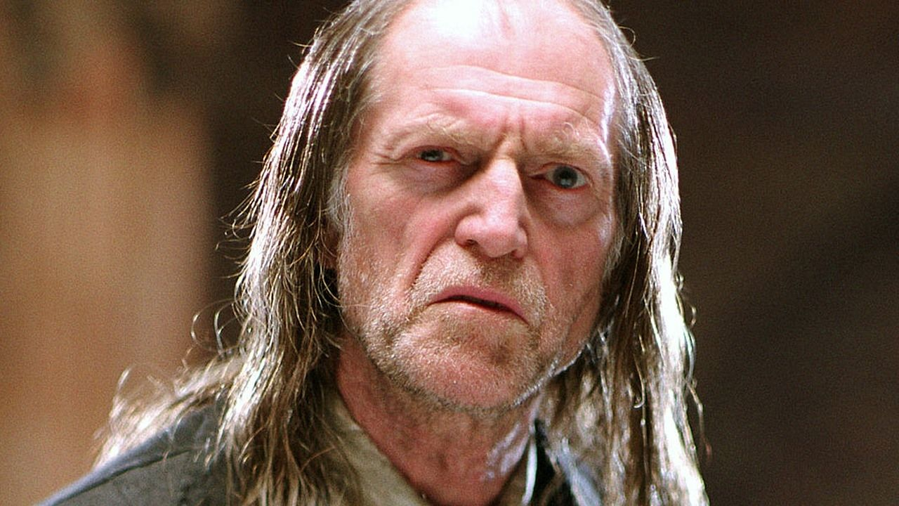 David Bradley Not My Image Found On Google Search But I Would Love To See This Hugely Talented Acto Harry Potter Characters Harry Potter Movies Harry Potter