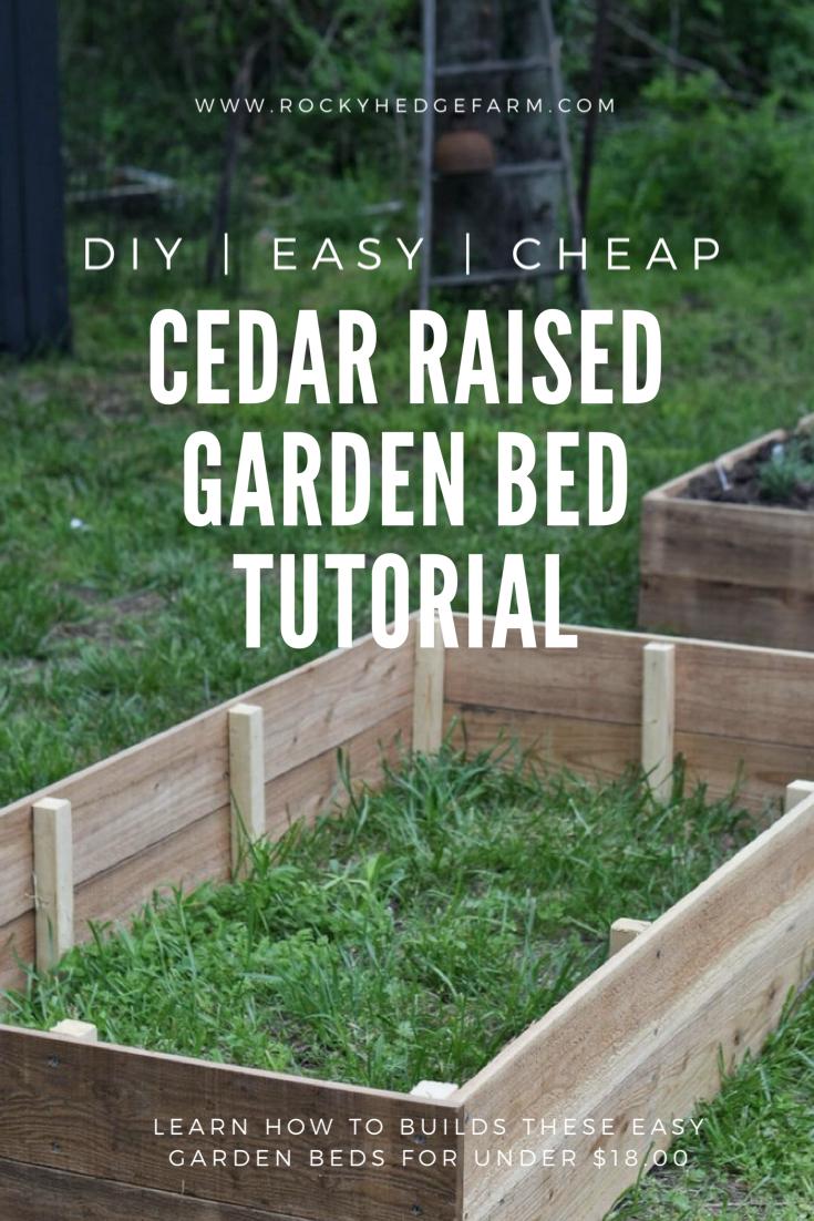 Cedar Raised Vegetable Garden Beds Vegetable Garden Raised Beds Building A Raised Garden Raised Garden Beds