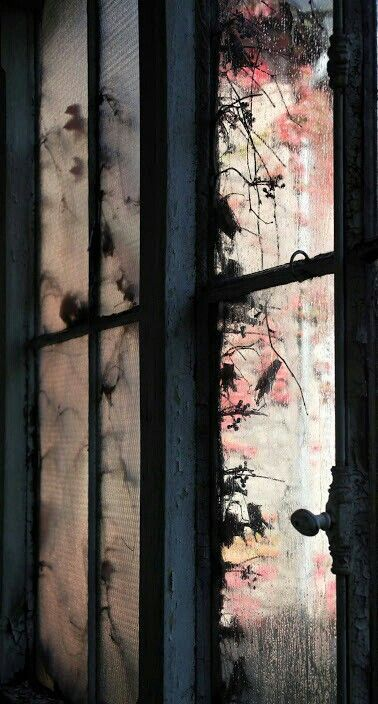 X Old windows   Lights my Fire in 2019   Windows, I love