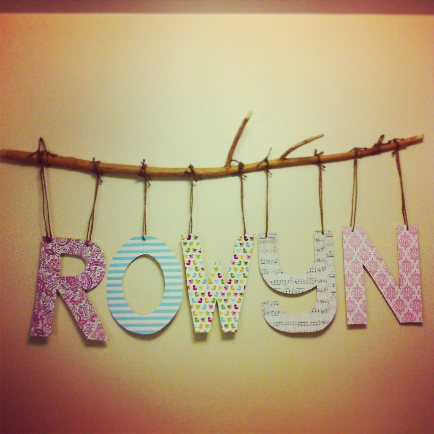 Wall hanging idea we took from Pinterest and made our own ...