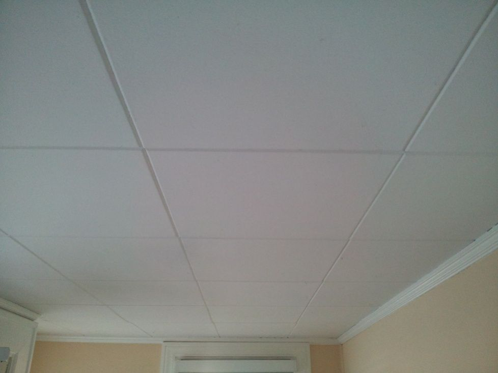 Identify And Remove Asbestos In Ceiling Tiles In 2020 Ceiling Tiles Ceiling Tile Pictures Tile Removal