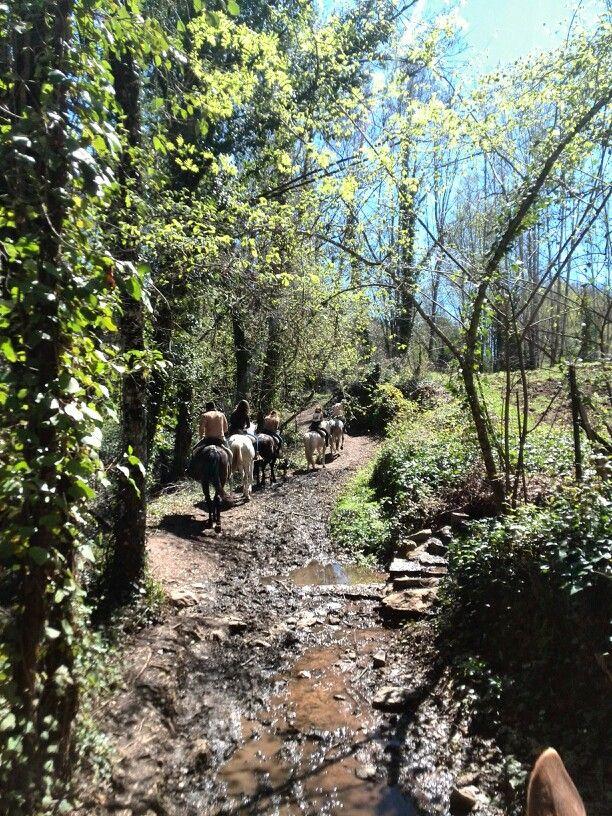 #sendero hasta #Fuenteheridos. Ya se nota la #primavera en la #sierradearacena. #decategoria #destinorural #turisbrand #sientehuelva