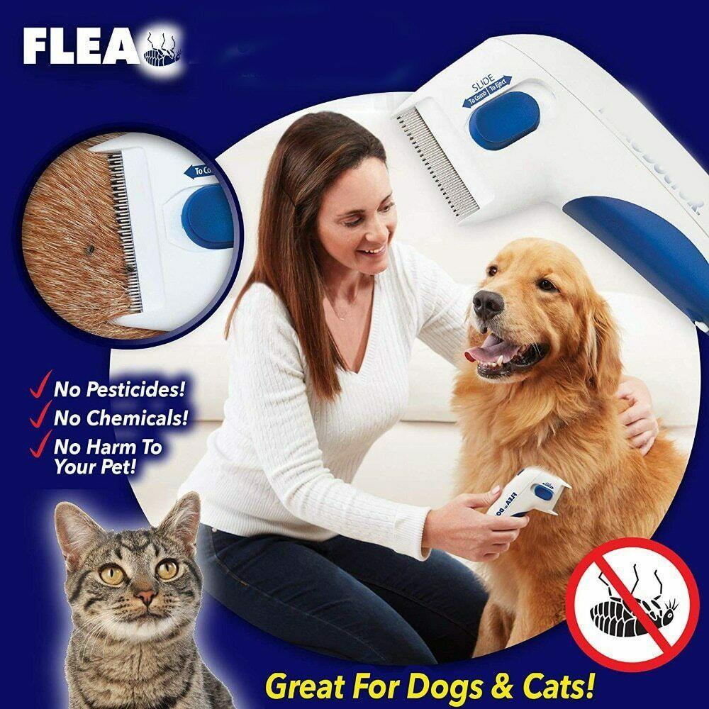 My ebay active fleas dog cat pets