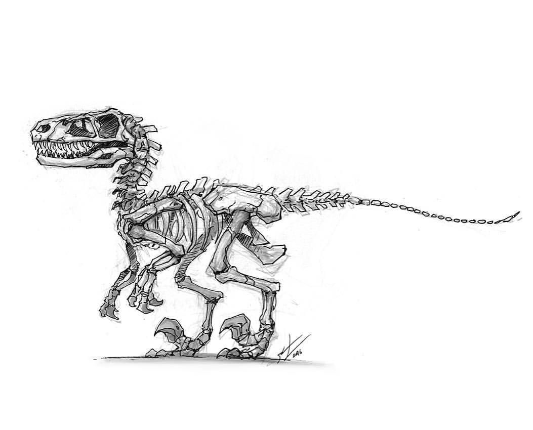 1,917 vind-ik-leuks, 17 reacties - Shaun Keenan (@shaunmichaelkeenan) op Instagram: 'raptor skeleton yo. #inktober #dinosaur #velociraptor #raptor #draw #art #illustration…' #dinosaurillustration