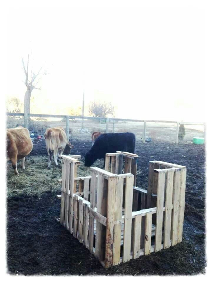 feeders goddard home goats feeder sue a made cattle beautiful homemade hay for and l noah of