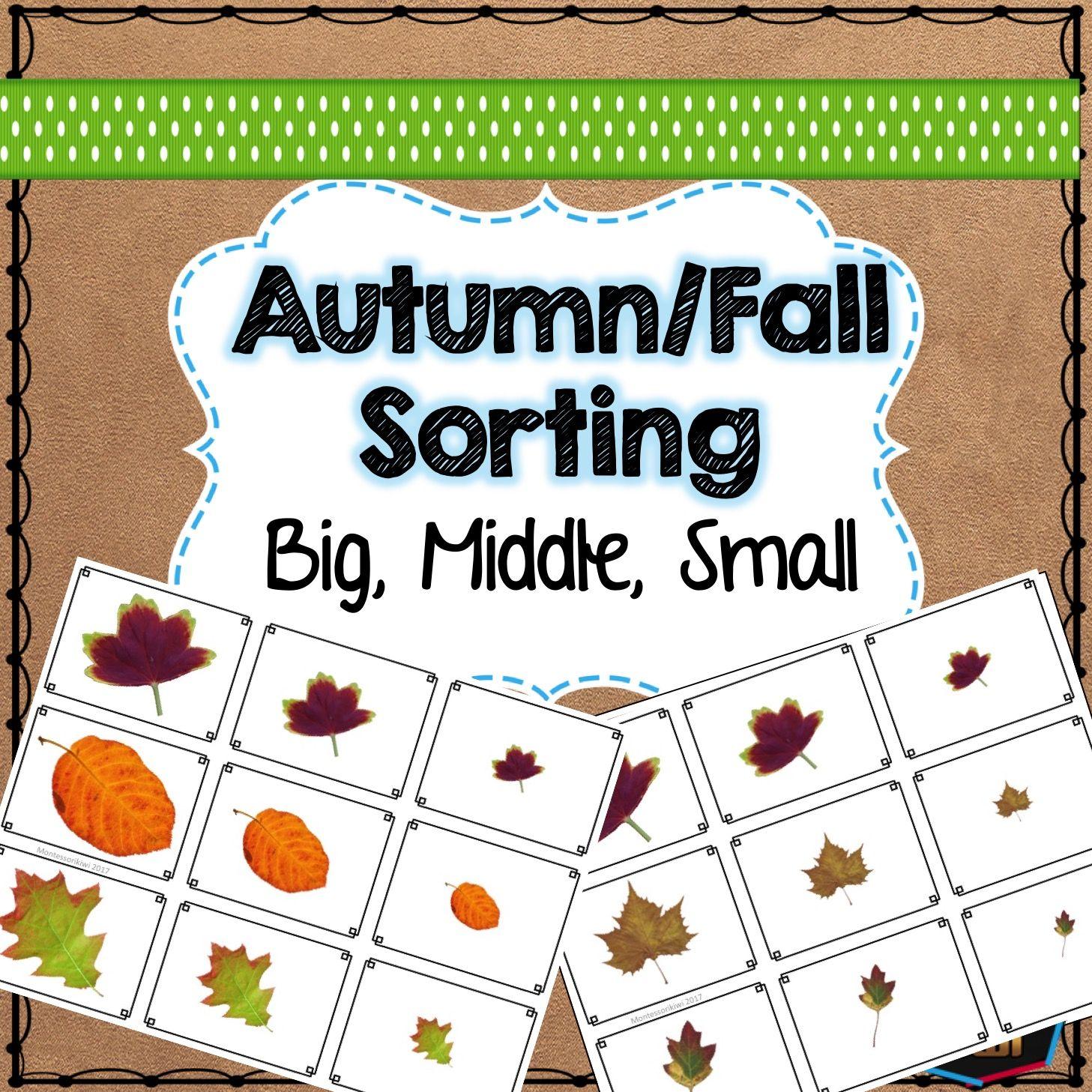 Autumn Fall Leaf Sorting Montessori Preschool