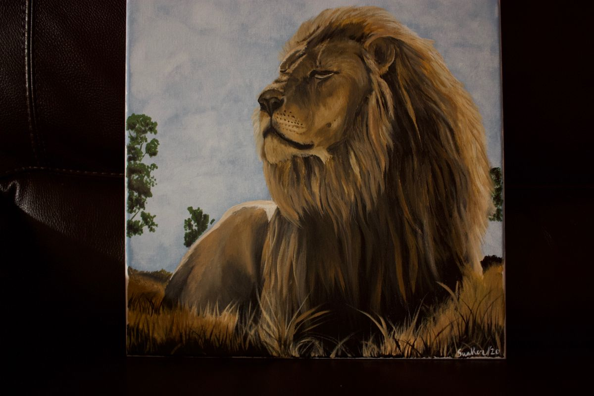 #lion #paintedlion #custompainting #handpaintedlion
