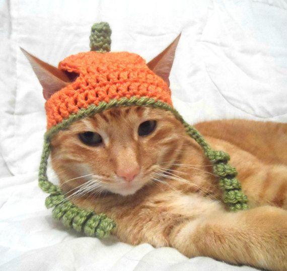 Crochet Cat Hat Halloween Pumpkin Hat For Cats Cat Halloween Costume Novelty Hats For Cats Crochet Cat Hat Crochet Pet Costumes Crochet Cat Clothes