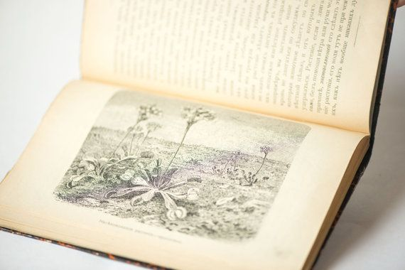 Life of plant book antique book in Russian 1905 by SovietEra