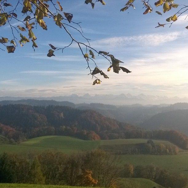 #switzerland #nofilter #amazing #emmental #bestplacetogo #lieblingsplätzchen #secret #berneroberland #swissalps #bestview #autumnleaves #alpview  Oben blauunten grau. Genial hier oben in den wynigenbergen! by crealela