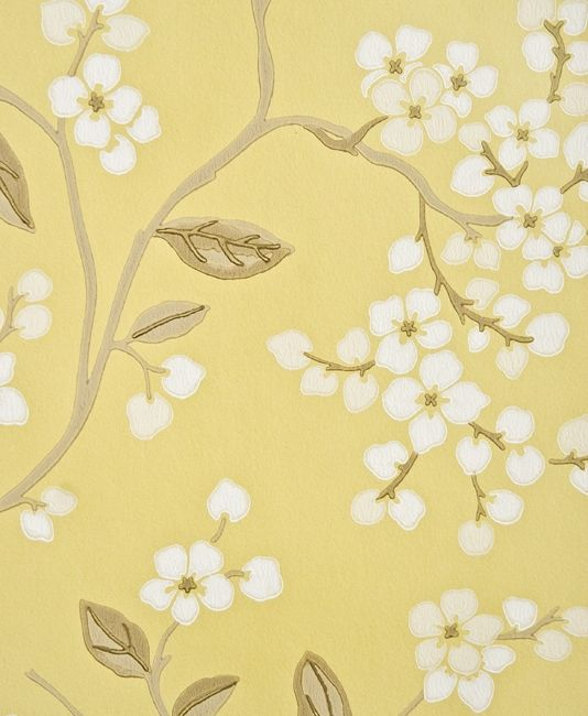 Le Blossom Fl Wallpaper 55 00 Per Roll Pale Yellow With Climbing Print In Taupe And White