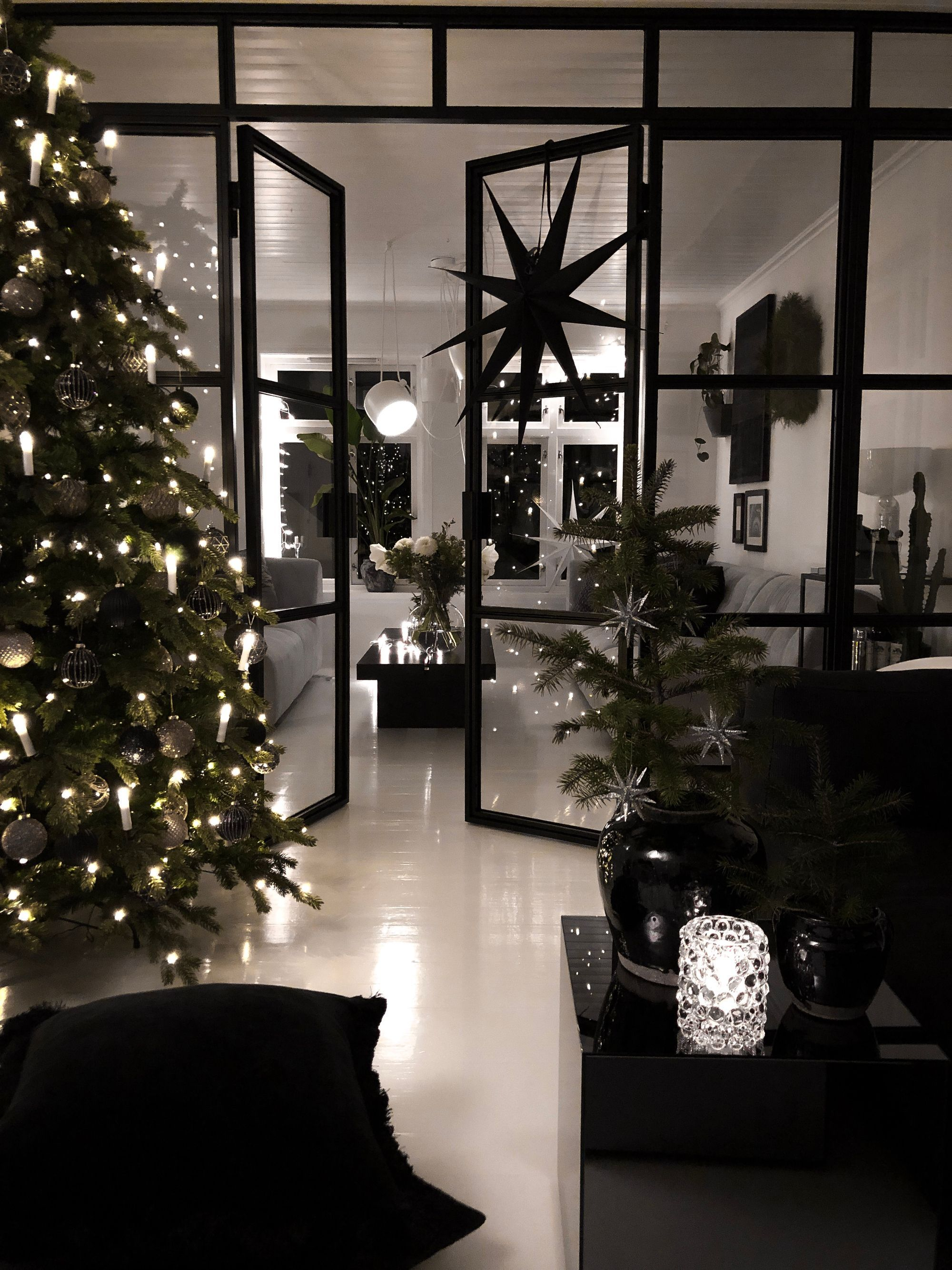 Christmas spirit with double french doors and fixed sidefiel…