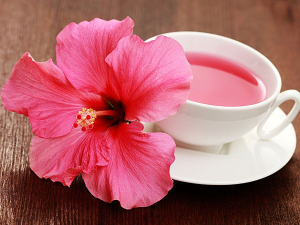 Health Benefits Of Hibiscus Hibiscus Tea Hibiscus Tea Benefits Hibiscus