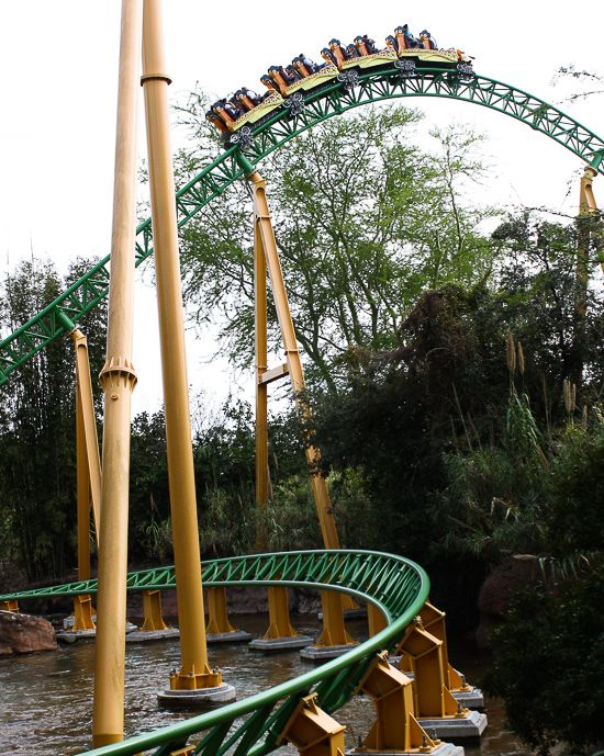 a7941430d268bb73d2aab4d5c00a4363 - Height Requirements For Busch Gardens Roller Coasters