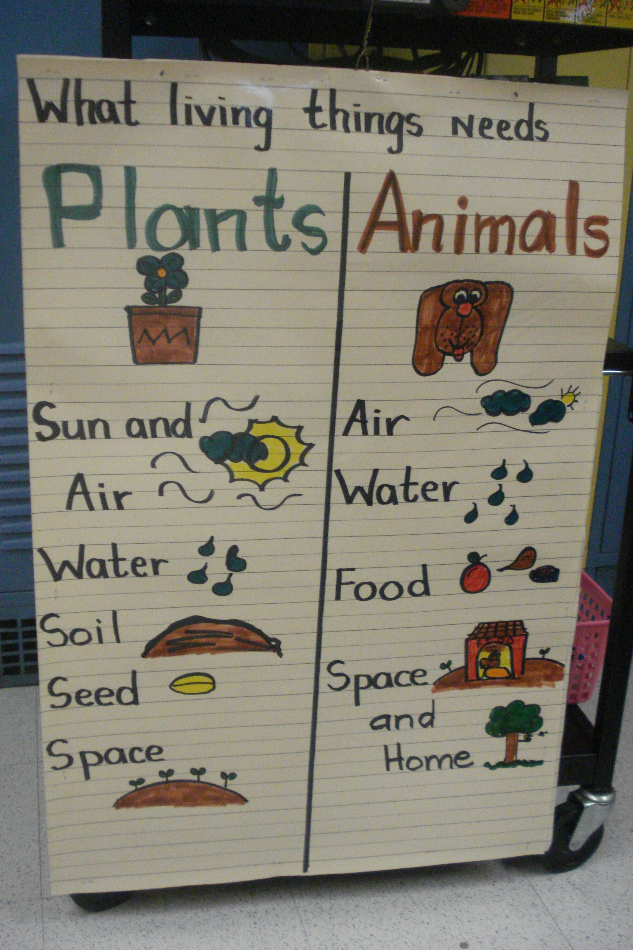 Plants and Animals NEEDS anchor chart | Kindergarten ...
