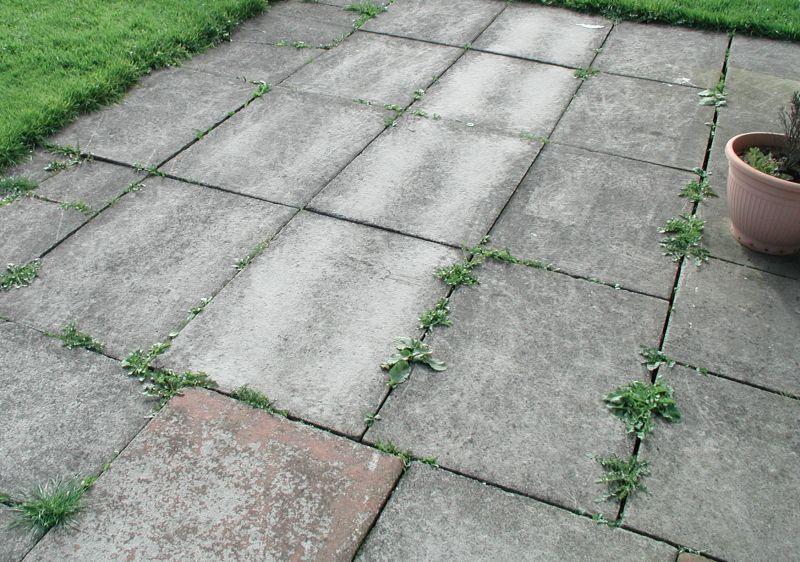 Pavimenti In Cemento Per Esterni.Pavimenti In Cemento Per Esterni Con Come Posare Un