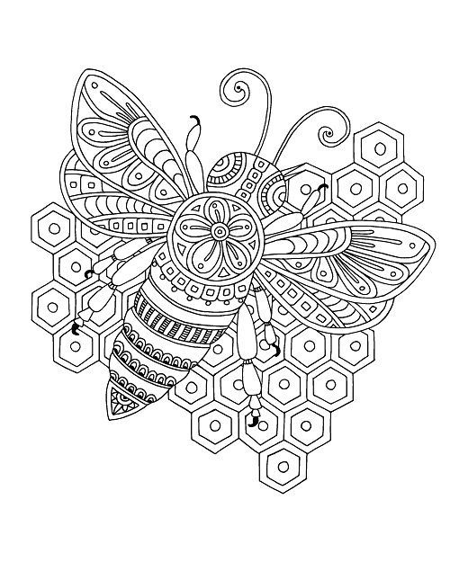 Pin On Bees Wha