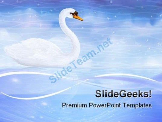 Swan Reflecting In Water Animals Powerpoint Templates And