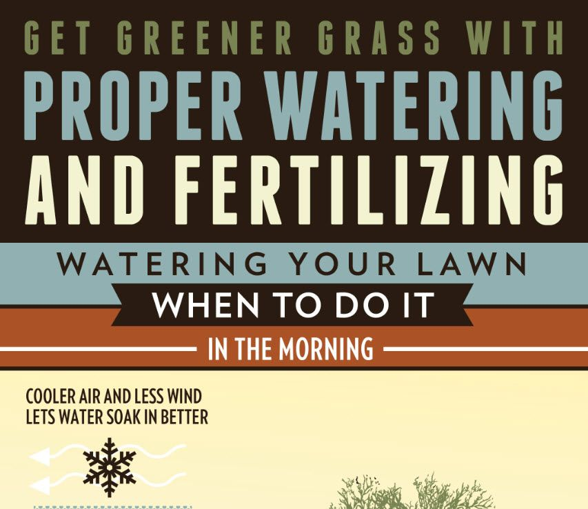 Are you tired of trying to make your lawn grow green and