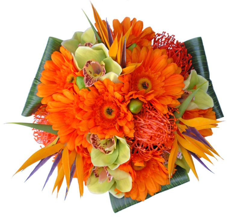 bouquet bird of paradise | ... Gerbera-Birds-of-Paradise-Flower ...