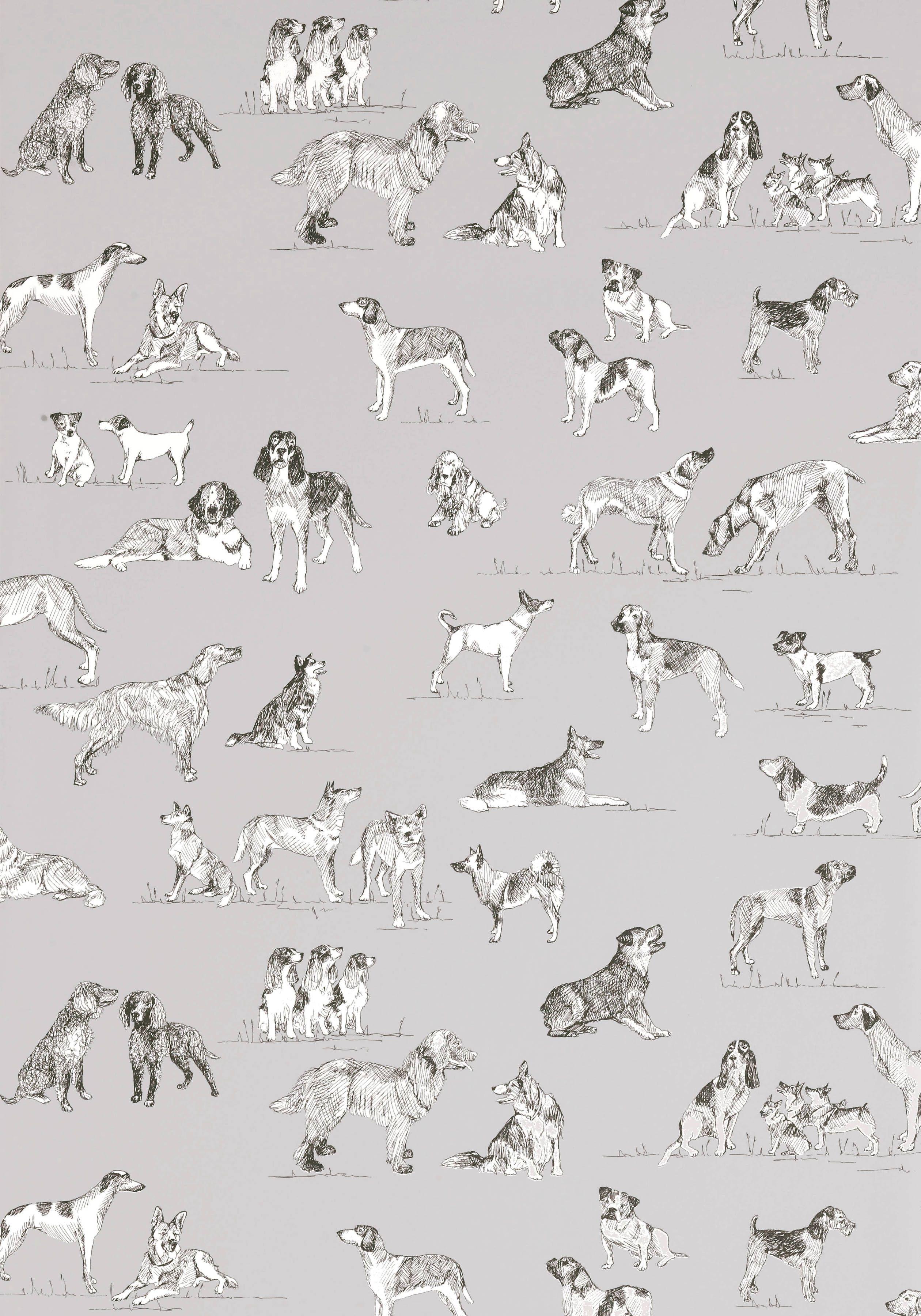 Best Friend Grey T1039 Collection Menswear Resource From Thibaut Best Friend Wallpaper Thibaut Wallpaper Friends Wallpaper