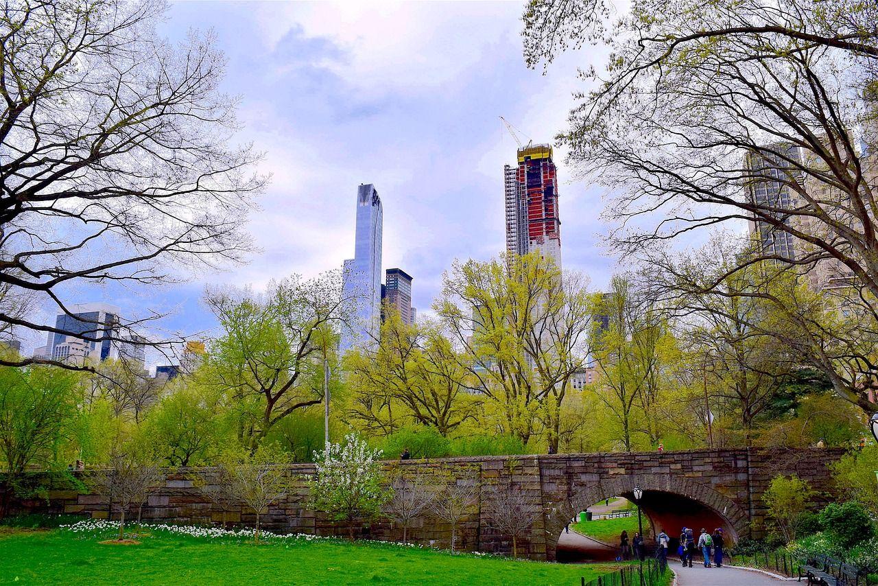 Park, Central Park, Nyc, Spring, Manhattan #park