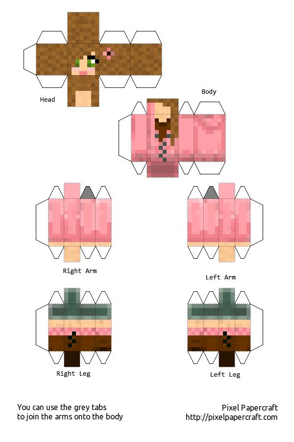 Papercraft Mca Girl 15 Follower Special Mine Craft Skins