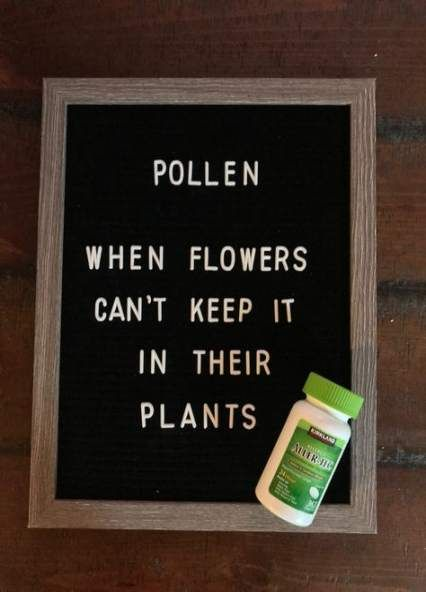 36+ trendy garden quotes funny laughing