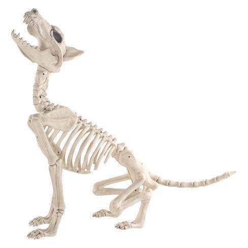 Halloween Wolf Skeleton - Hyde and Eek! Boutique™  Target Skull