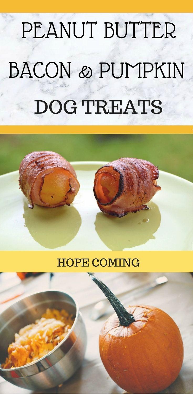 Peanut Butter Bacon and Pumpkin Dog Treat Pumpkin dog treats